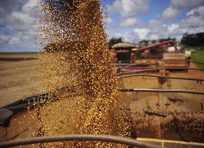 Hora de apertar os gastos com a nova safra de grãos
