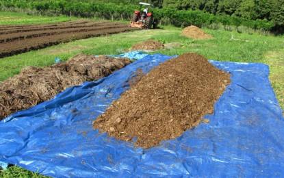Aprenda cinco técnicas para melhorar a produção agropecuária
