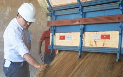 Volume de recebimento de grãos na Cotrijui triplica em outubro de 2014