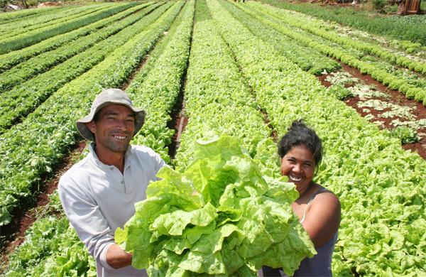 Agricultura familiar é fundamental para erradicar a fome