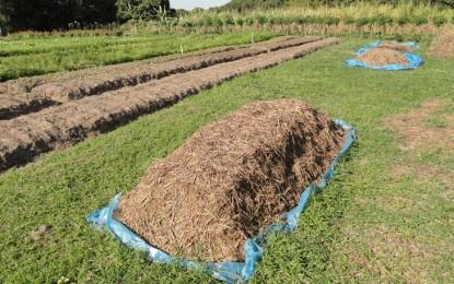 Brasil pode aumentar dependência de importação de fertilizantes, diz Embrapa