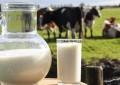 Ficou mantido padrão de contagem bacteriana e de células somáticas do leite