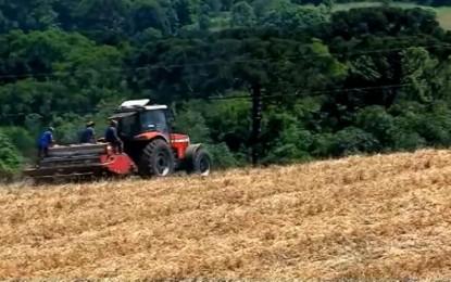 Grupo de indígenas começa a plantar soja em área invadida no Norte do Estado