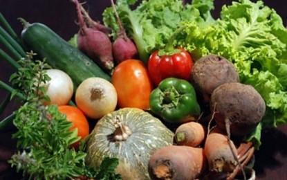 Pequenos produtores na base da alimentação mundial