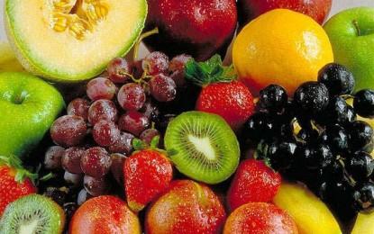 Veja dicas para o cultivo de frutas