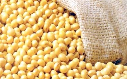 Exportações de soja do Brasil no ano já superam o total registrado em 2016