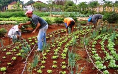 Conselhos Deliberativos da Emater aprovam R$ 305 milhões para 2015