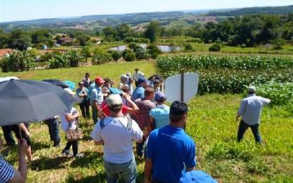 Dia de Campo em Crissiumal envolve famílias da chamada pública