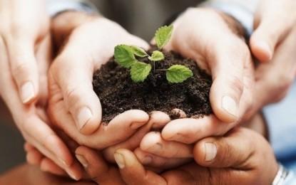 Conab contrata mais de R$ 320 milhões no Programa de Aquisição de Alimentos em 2014
