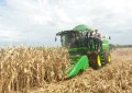 Colheita das principais culturas de verão está praticamente concluída no RS