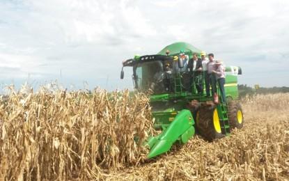 Seguro agrícola poderá ser ampliado
