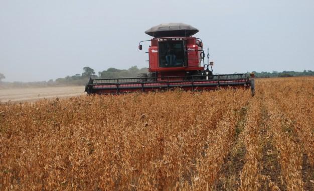 Quase 10% das lavouras de soja estão colhidas no Estado