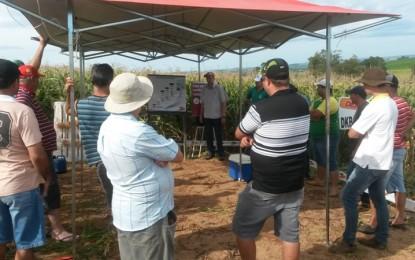 Dias de Campo realizado nos municípios de Miraguaí, Tenente Portela, Derrubadas e Barra do Guarita