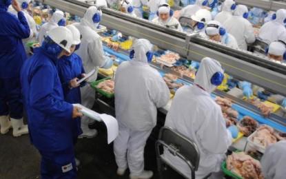 Aumento de doenças e acidentes de trabalho é foco de força-tarefa para fiscalizar frigoríficos gaúchos