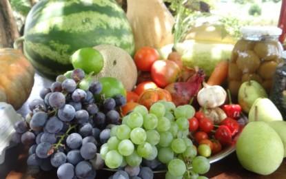 Produtos orgânicos conquistam espaço em Santa Rosa