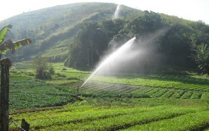 Agroecologia e produção orgânica terão novo plano
