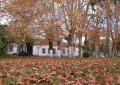 Outono terá influência de fraca intensidade do fenômeno El Niño