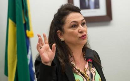 Ajuste fiscal não reduzirá recursos à agricultura, diz Kátia Abreu