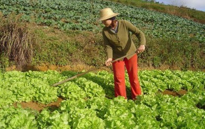 RS: Agricultores familiares recebem recursos de R$ 798 mil