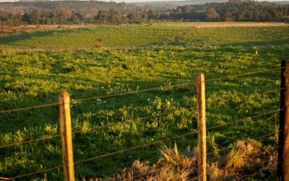 Plano de reforma agrária será anunciado por Dilma nas próximas semanas