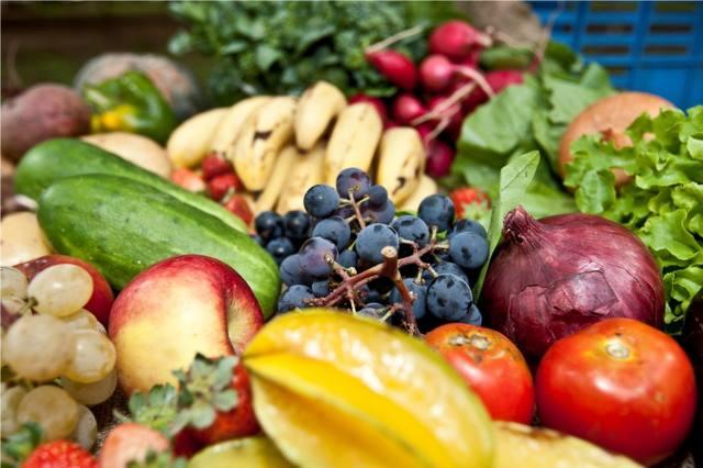 Resultados do Plano Estadual de Agroecologia e Produção Orgânica