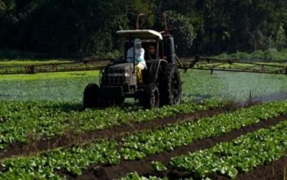 Agricultor contrata quase 90% dos recursos para Crédito Rural