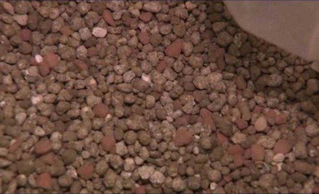 Novo fertilizante pode reduzir custos