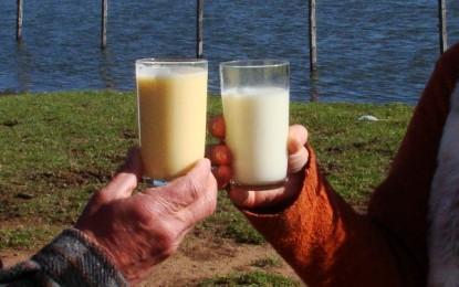 Consumo de colostro é regulamentado no Brasil