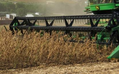 Produtividade do milho e da soja superam expectativas no RS