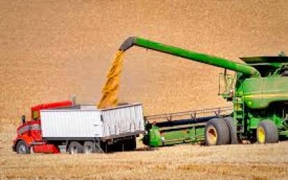 Conab prevê supersafra de 232 milhões de toneladas de grãos