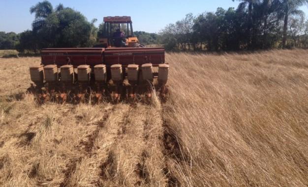 Baixa % dos produtores rurais brasileiros dá atenção ao manejo físico e biológico do solo