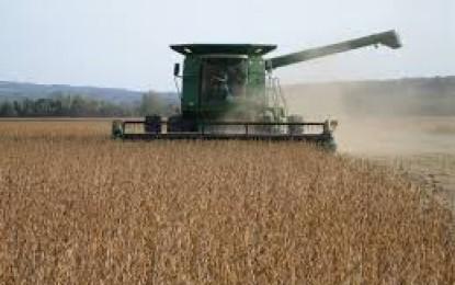 Soja lidera exportações do agronegócio brasileiro em abril