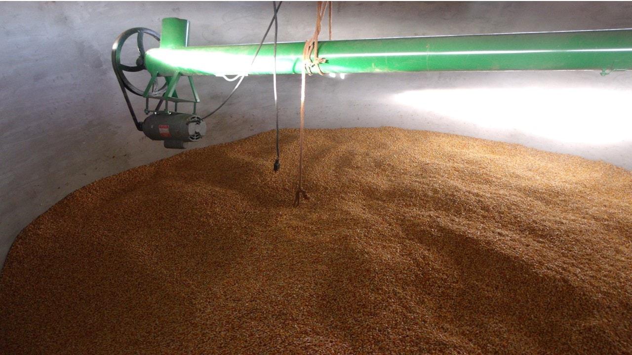 Agricultores investem na construção de silo para secagem e armazenamento de grão.