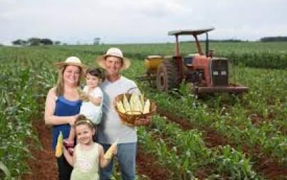 Novo Cadastro Nacional da Agricultura Familiar (CAF), Ira substituir a Declaração de Aptidão ao Pronaf (DAP).