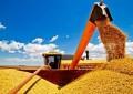 Brasil deve ultrapassar os EUA na produção de soja em dez anos