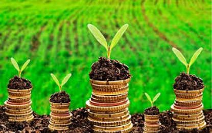 Crédito rural, possibilidade de fazer financiamento de custeio até 180 dias após a aquisição de insumos