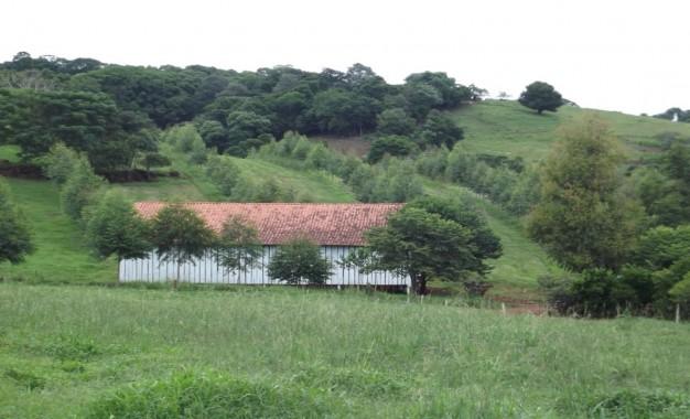 Áreas financiadas pelo Programa Agricultura de Baixo Carbono crescem quase 98% de julho a setembro