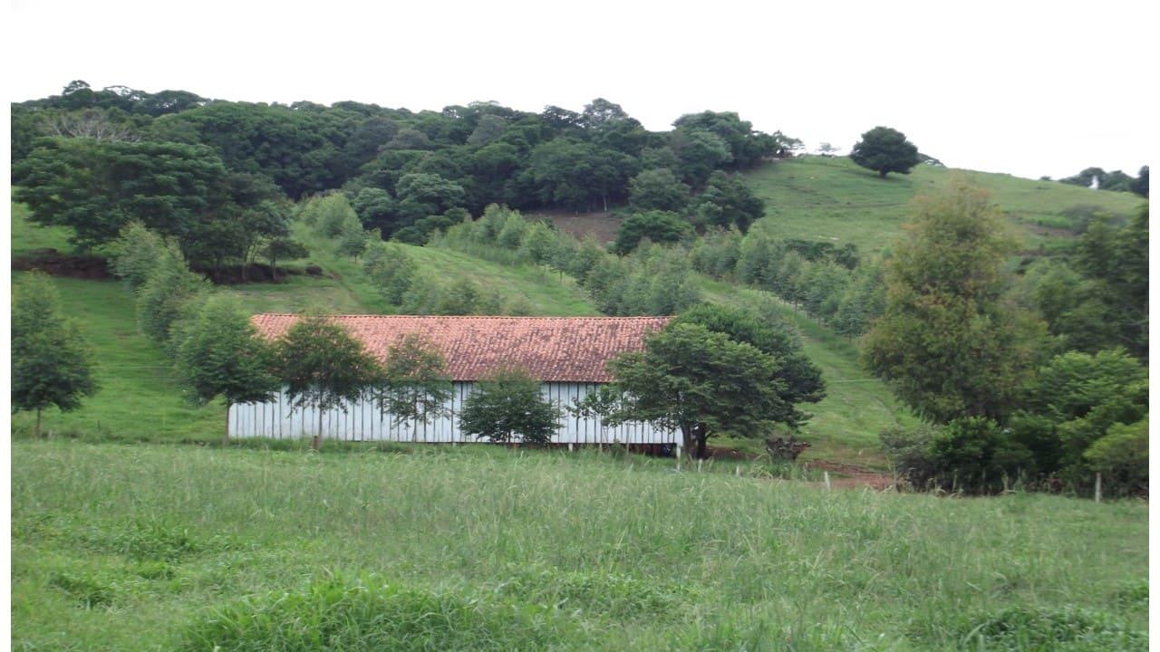 Declaração de propriedade rural deve ser entregue até sexta- feira