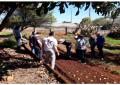 Redentora, curso sobre horta, realiza atividade pratica com manejo e plantio