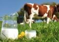 Setor de lácteos começa a registrar reação