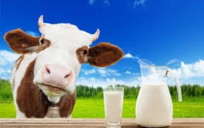 Suspensão de decreto para importação de leite em pó assegura competitividade para cadeia produtiva gaúcha