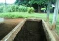 Como produzir minhocas e húmus em pequenas propriedades
