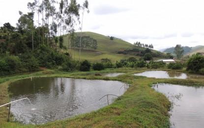 Tiradentes do Sul, Atividade piscicultura