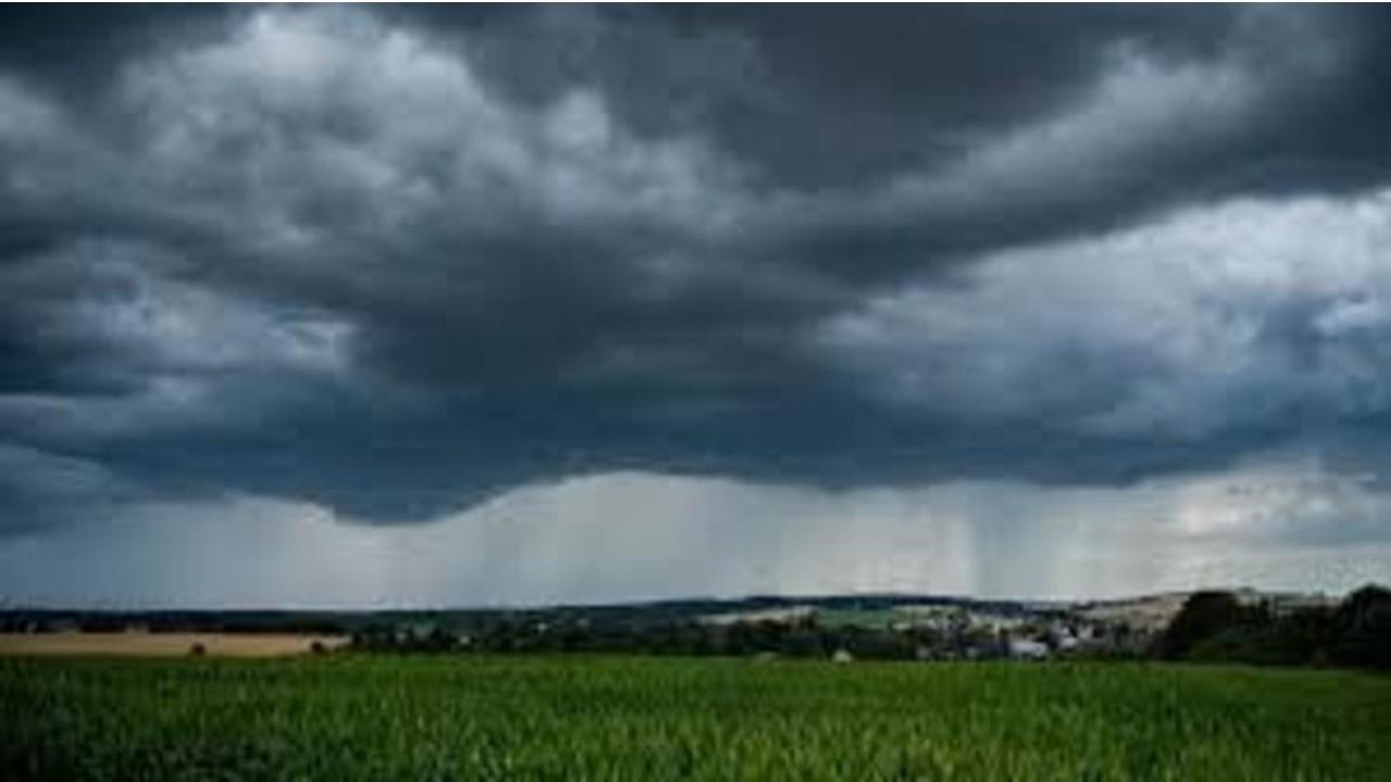 El Niño e a agricultura: Como fica o clima para os próximos meses