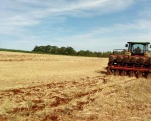 Clima, Agricultores terão alguns dias de tempo aberto no Estado do RS
