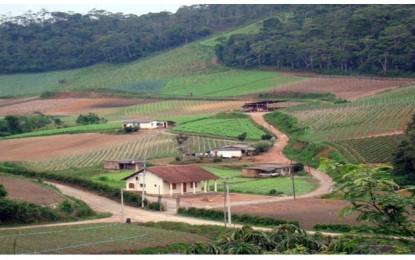 O Brasil e a nobre missão de alimentar o mundo