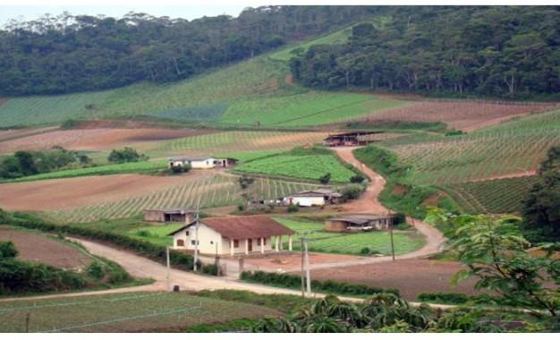 Pequenos e médios produtores terão mais R$ 6 bi em crédito rural