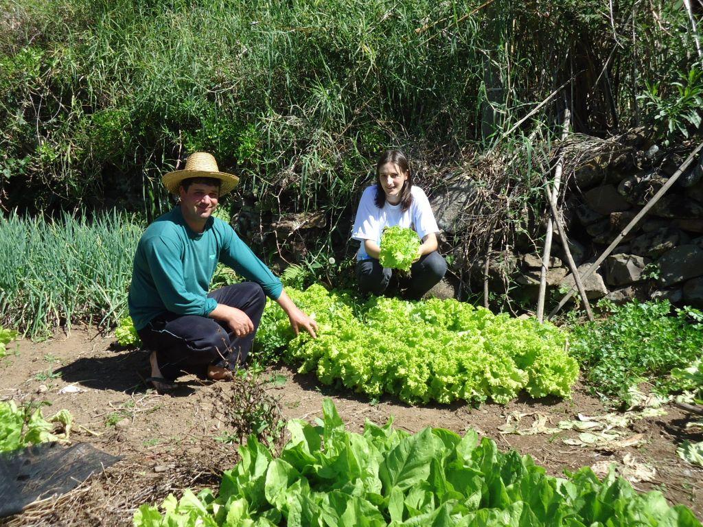 Programa  Incentiva Jovens do Meio Rural