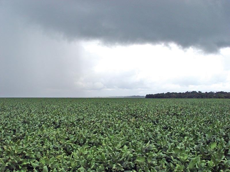 Chuva: No Rio Grande do Sul a partir desta quarta