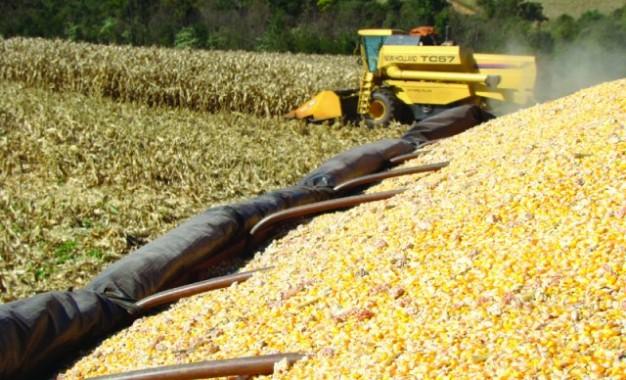 Imposto de importação para soja e milho é zerado até 2021